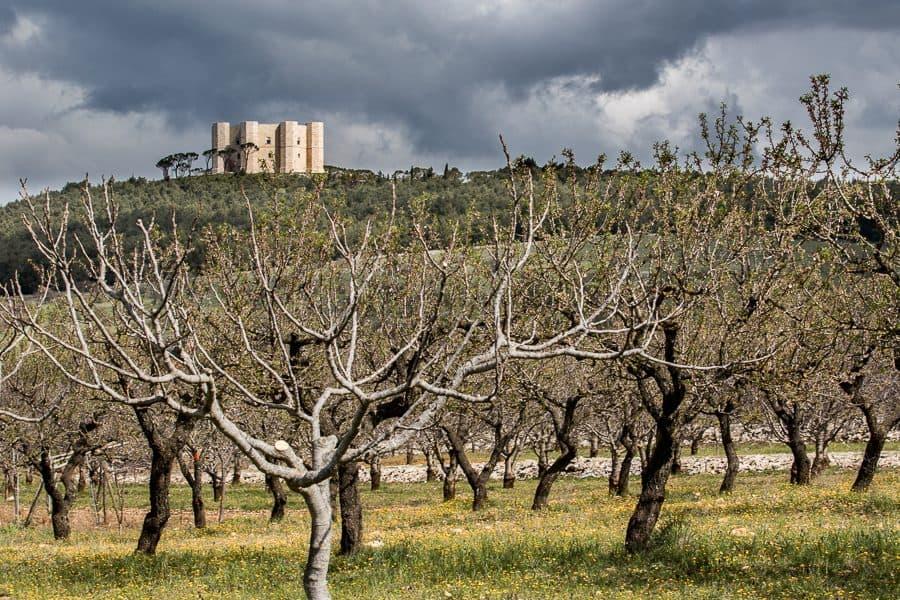Le château Castel del Monte depuis le plateau des Murges