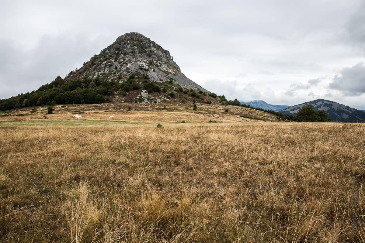 """Le mont Gerbier de Jonc est un """"suc"""""""